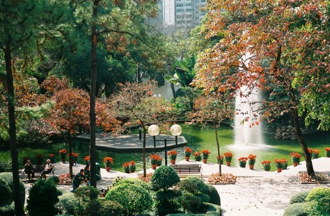 24 hours in Hong Kong - Kowloon Park